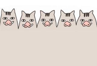 シンプルおしゃれな猪亥年年賀状